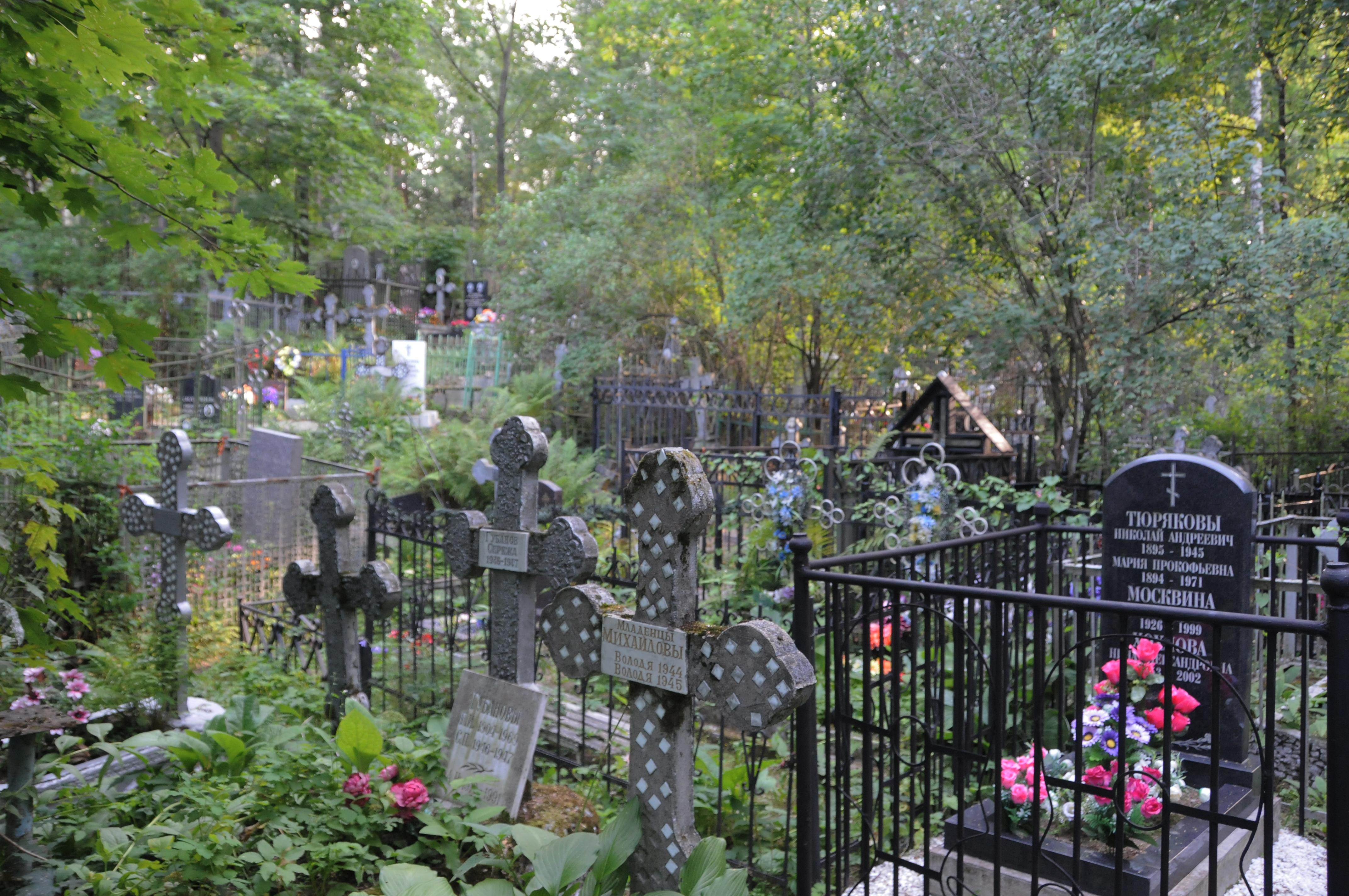 Подростки распивали на кладбище алкоголь. Новости Днепра