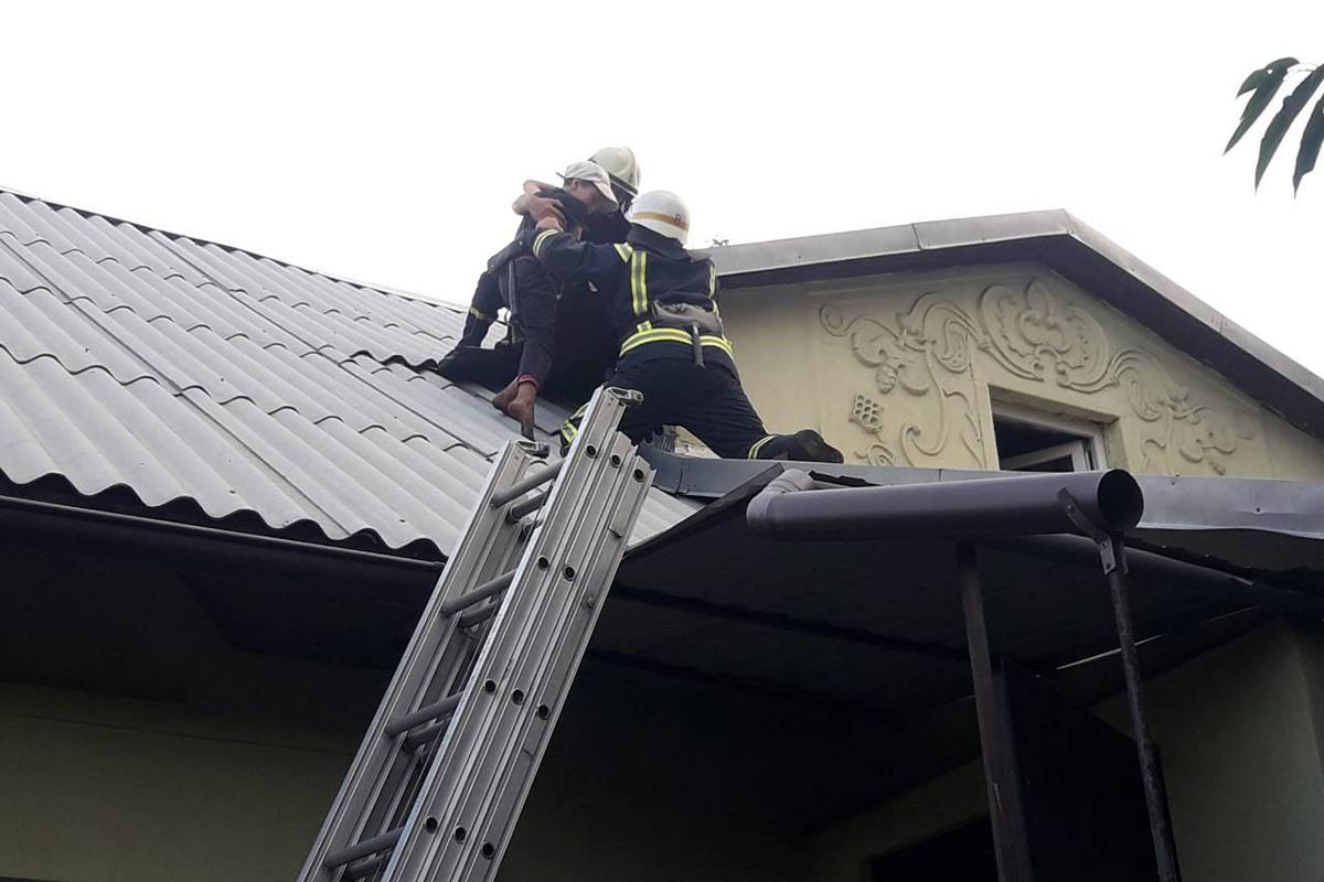 Спасатели помогли ребенку спуститься с крыши. Новости Днепра