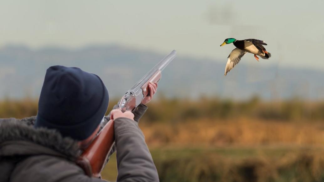 Охотники открыли стрельбу рядом с купающимися детьми. Новости Днепра