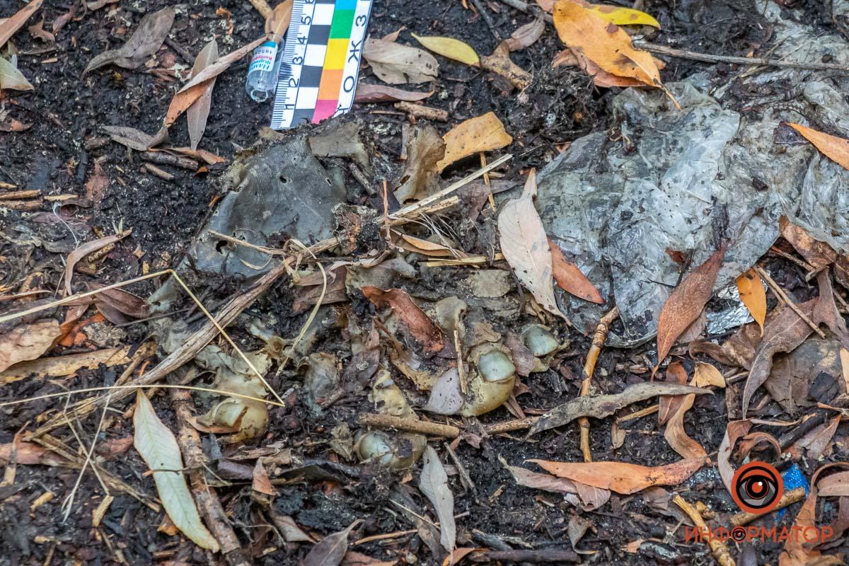 В Днепре мужчина нашел человеческие останки. Новости Днепра