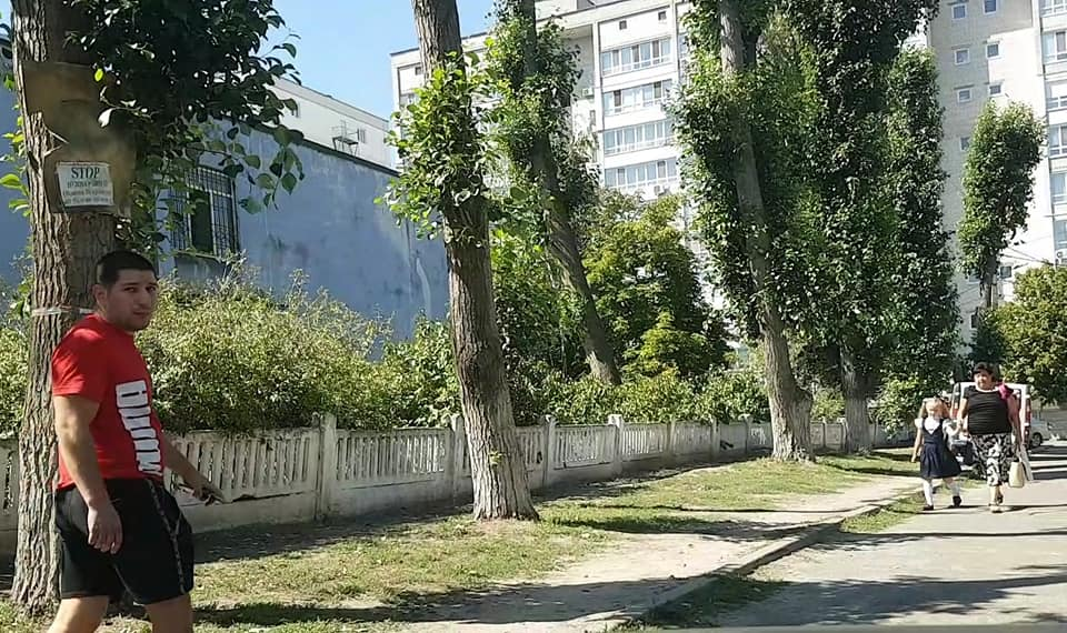 Бойцовая собака гуляет без поводка возле школы. Новости Днепра