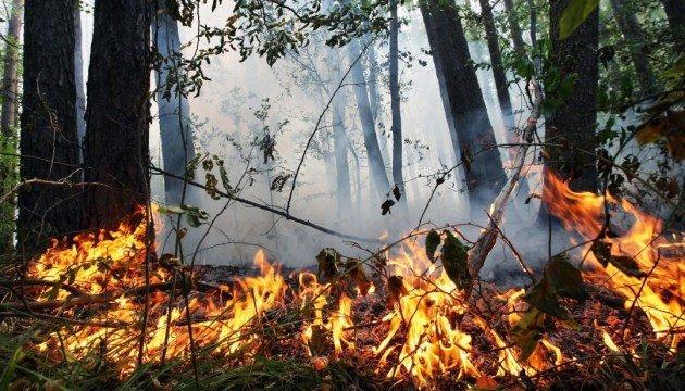Могут возникать пожары в лесах, посадках и на открытых территориях. Новости Днепра