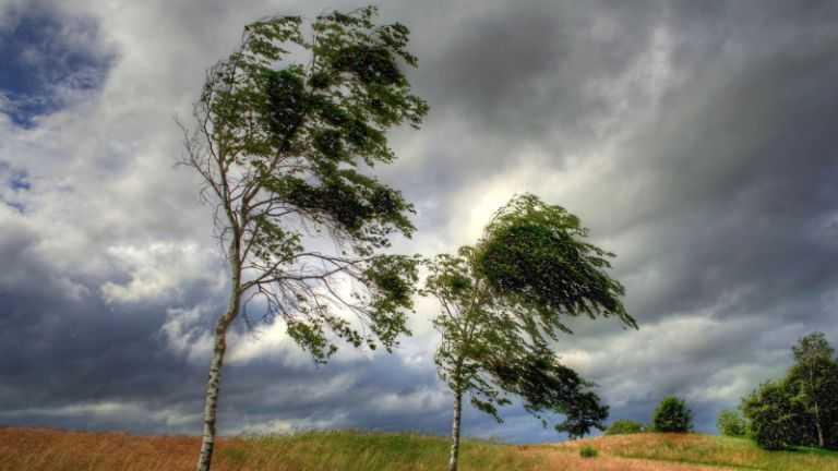 Сильный ветер в Днепре