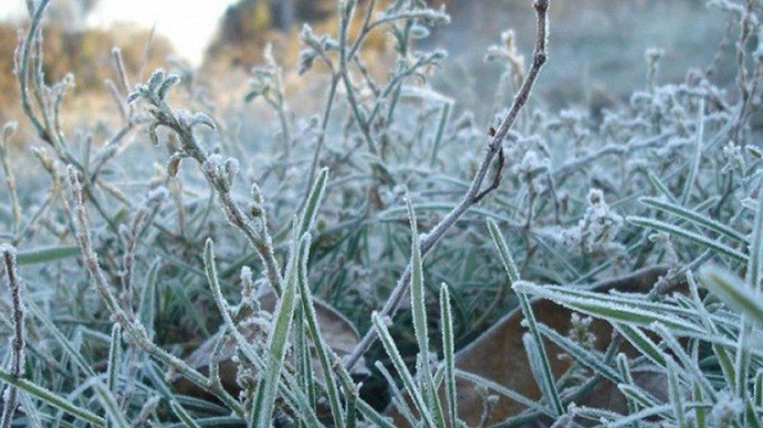 Стало известно, когда в Украину придут заморозки и холода.