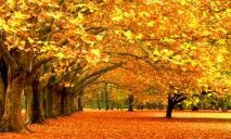 23 сентября: какой сегодня праздник, что нельзя делать и приметы дня