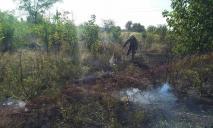Пожар: спасатели тушили возгорание сухой растительности