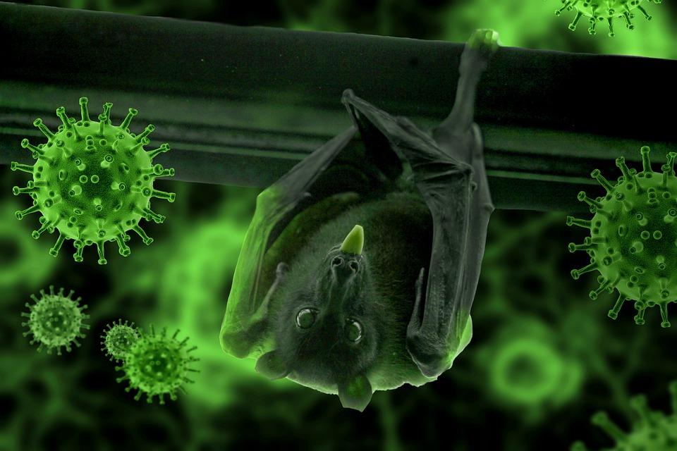 Сколько человек заболели коронавирусом за сутки. Новости Днепра