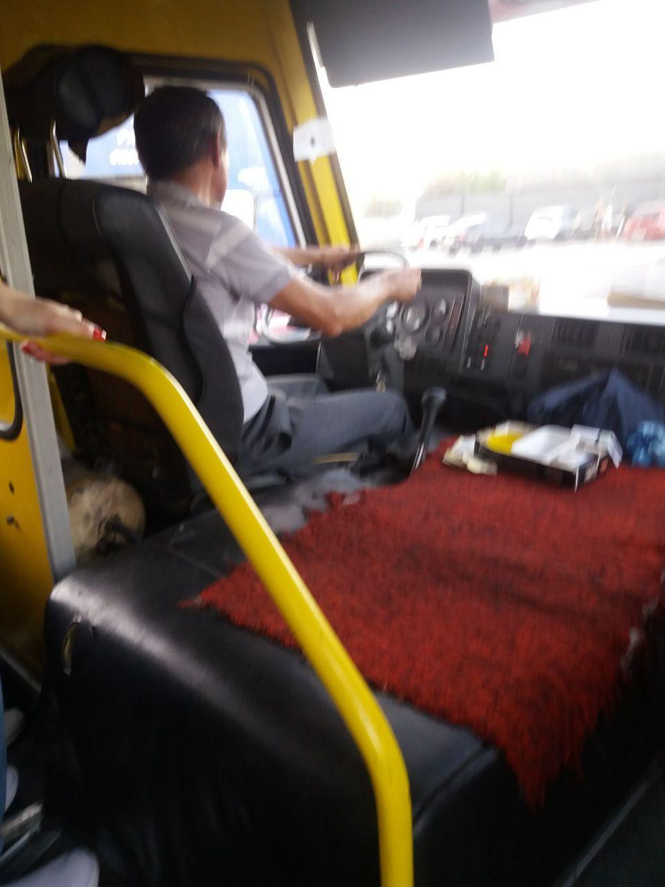 Наказали водителя, который зажал руку пассажирки в дверях. Новости Днепра