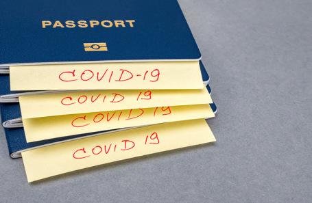 Есть антитела или нет: будут ли украинцам делать иммунные паспорта
