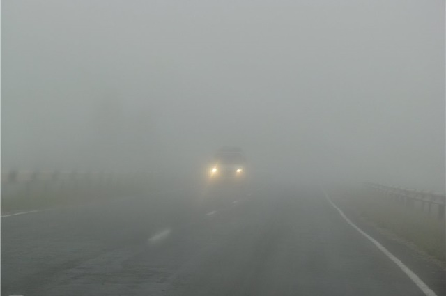 Синоптики предупредили, что 13 октября ночью и утром в городе Днепр и местами по области ожидается туман. Так и произошло. Сейчас в регионе действительно густой туман. Новости Днепра