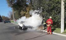 Пожар тушили 5 спасателей: автомобиль полностью охватило огнем
