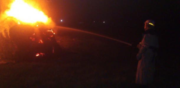 В результате масштабного пожара уничтожена большая площадь, что случилось
