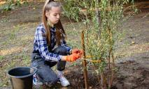 Днепр цветущий: воспитанники кружка «Юные экологи» показали, как высаживать плодовые деревья