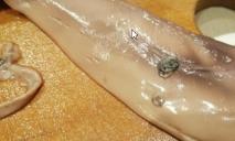 С жабрами и паразитами: женщине продали рыбу с «сюрпризом»