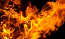 Шел дым: в квартире случился пожар, пострадали дети