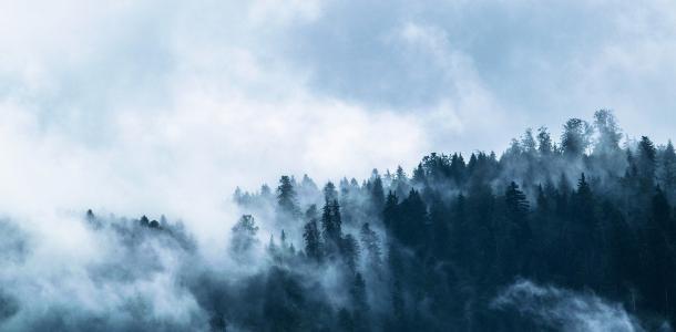 Днепр накроет туман: прогноз погоды на ближайшие дни