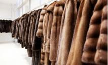 «Королевский наряд»: ТОП самых дорогих шуб в Днепре
