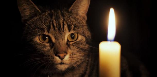 Почти на весь день: отключение света в Днепре на 22 октября