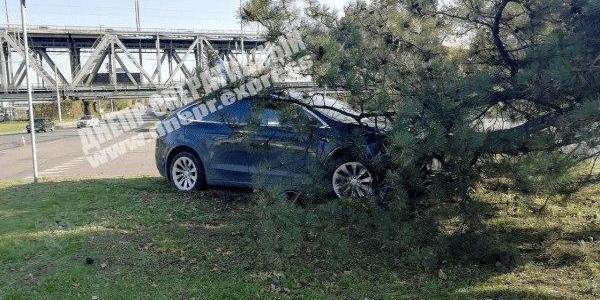 Видео момента: в Днепре автомобиль влетел в дерево, что случилось