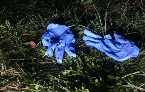Устанавливают личность: в одном из парков нашли труп мужчины