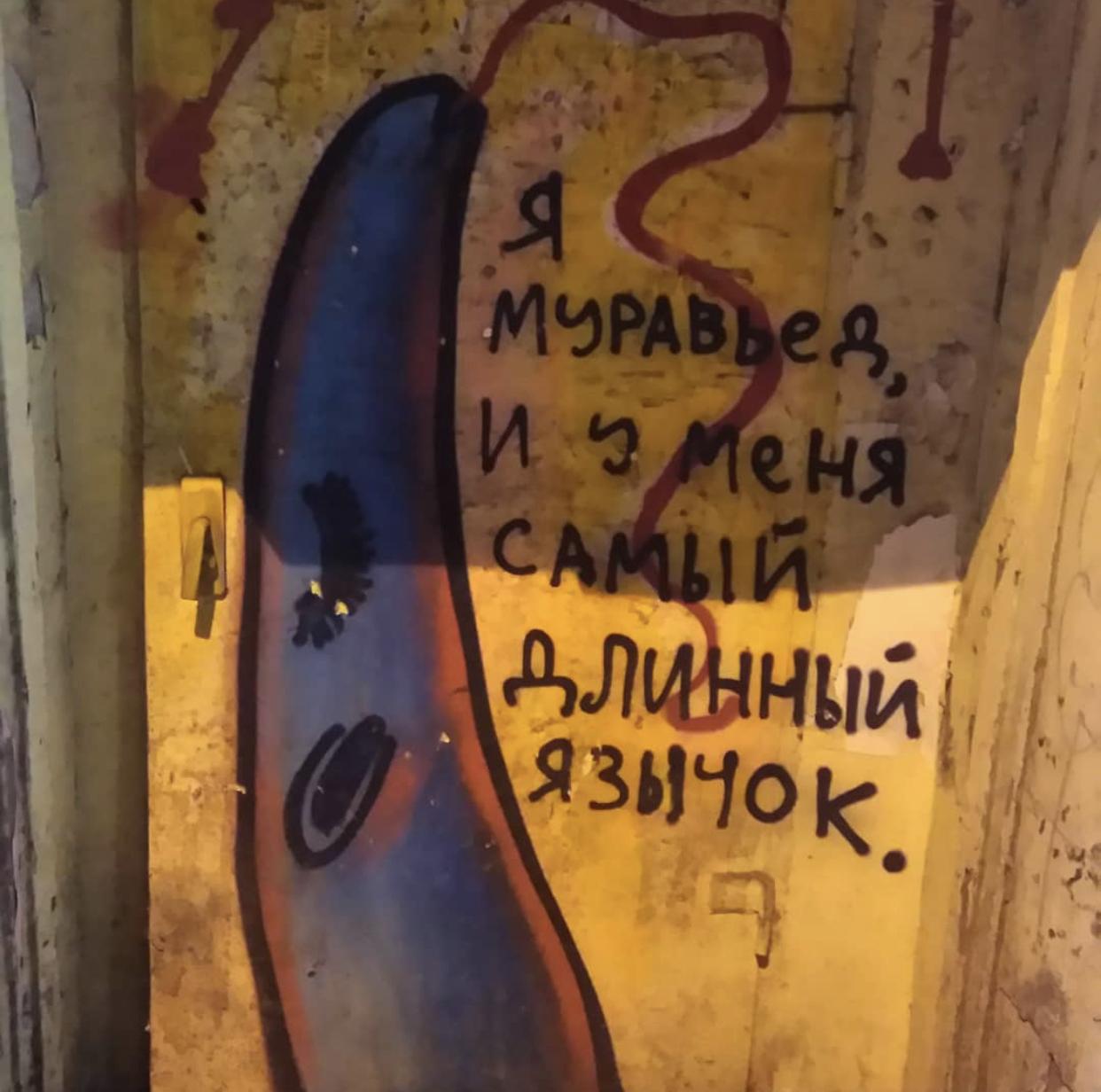 Нашествие муравьедов. Новости Днепра.