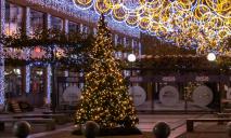 Праздник уже близко: на Екатеринославском бульваре появилась «зеленая красавица»