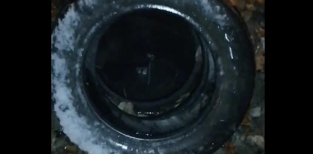 Ребенок провалился в люк на Днепропетровщине (ВИДЕО)