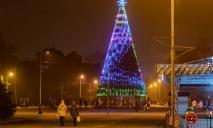 В парке Глобы зажгли огни на новогодней елке: как она выглядит