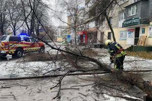Непогода накрыла Днепр и область. Как боролись с последствиями, новости Днепра