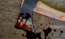30 ударов ножом и топором. Парень на Днепропетровщине с особой жестокостью убил односельчанина