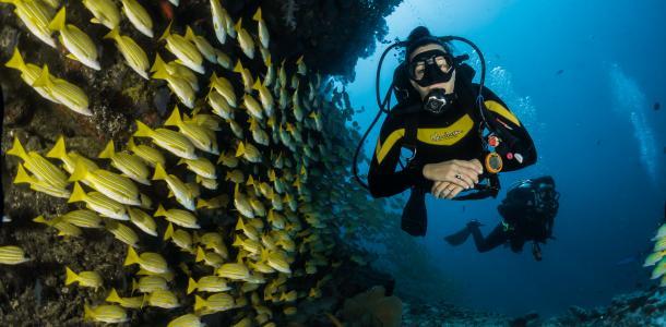 Филатов опустится на дно: в Днепре пройдет подводная конференция