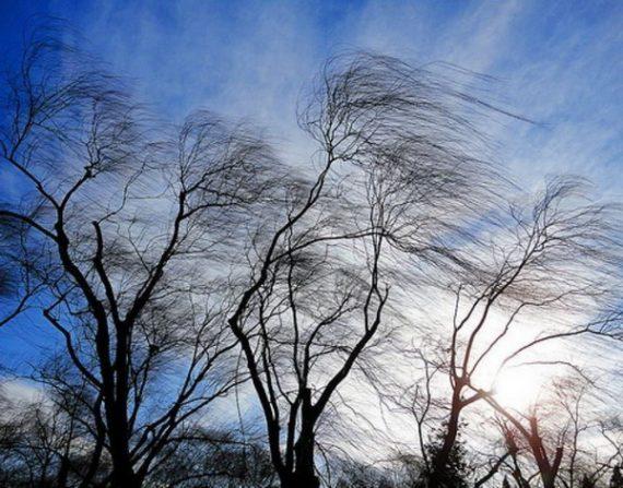 Погода в Днепре 1 января. Новости Днепра