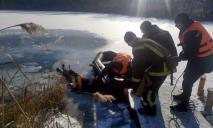 На Днепропетровщине в заброшенном карьере утонул мужчина