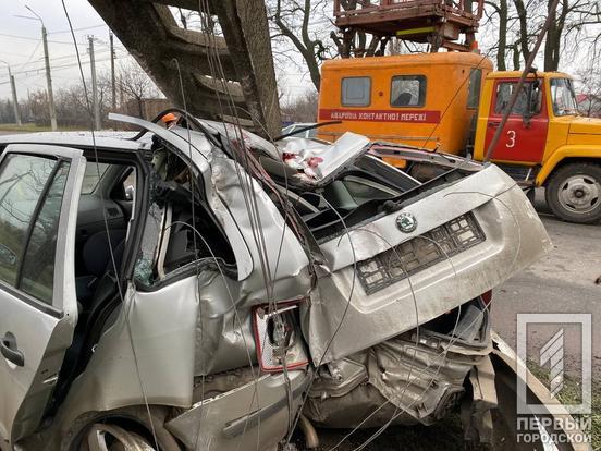 Водитель влетел в дерево. Новости Днепра