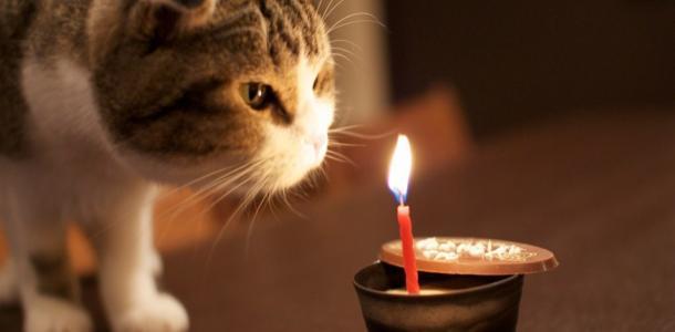 23 января масштабное отключение света в Днепре: ищите свой адрес