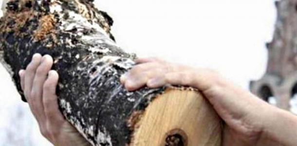 Убил собутыльника и повесился: под Днепром повздорили мужчины