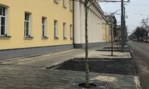 В Днепре показали обновленный тротуар на проспекте Яворницкого