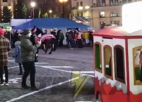 Лошадь испугалась праздника. Новости Украины