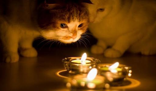 Сотни днепрян останутся без света во вторник, 26 января