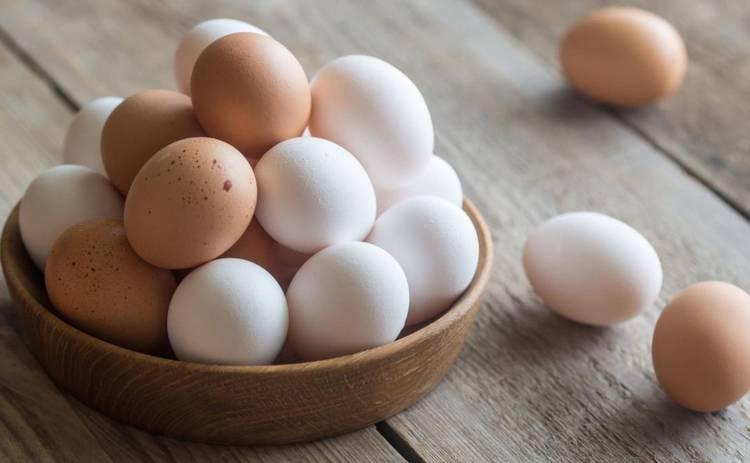 Повысятся цены на яйца. С чем это связано. Новости Украины