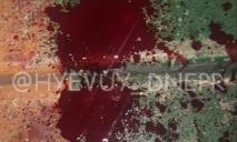 Полиция, кровь и крики в одной из многоэтажек Днепра (ВИДЕО)