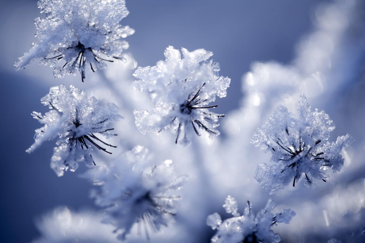 Новости Днепра про Мороз и ветер: прогноз погоды на 7 февраля