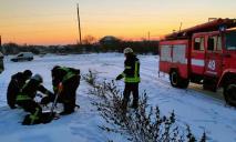 «На морозе и в глубокой яме»: собака попала в беду