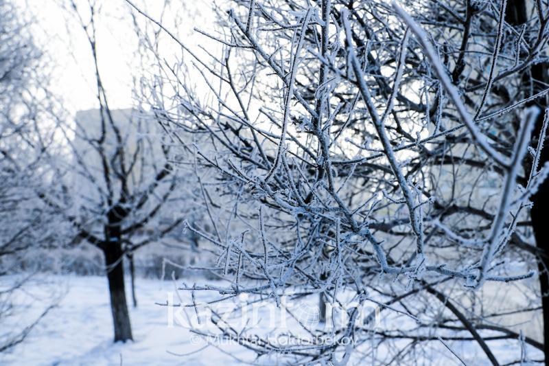 Новости Днепра про В Днепре снова морозы: погода на 23 февраля