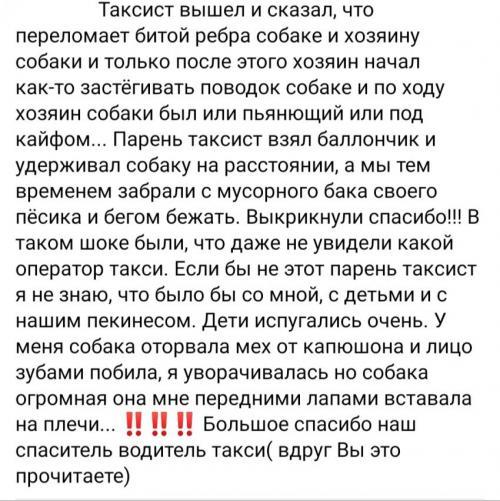 Новости Днепра про Агрессивный бойцовский пес напал на детей по Днепром