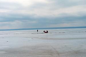 Новости Днепра про Как спасали рыбака, который провалился под лед (ВИДЕО)