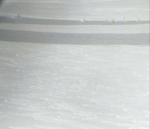 Новости Днепра про Под Днепром в ледяном котловане замерзают лебеди
