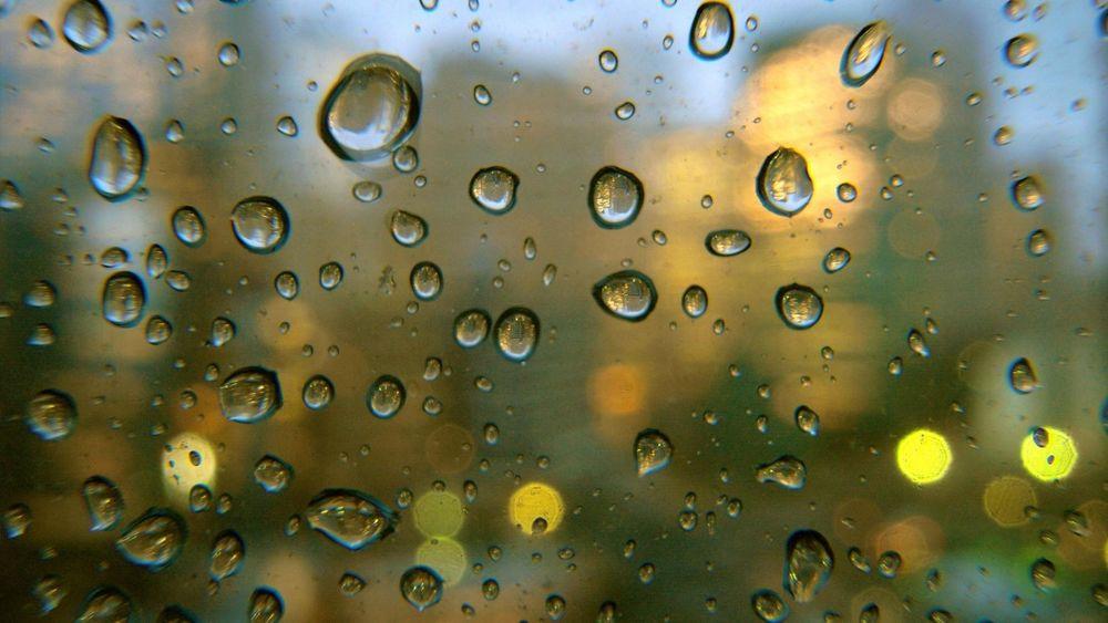 Новости Днепра про Сильный ветер и дождь: погода в Днепре 4 февраля