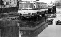 Транспорт 30 лет назад: в сети вспоминают, как раньше выглядели автобусы