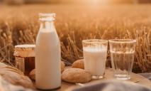 В преддверии Пасхальных праздников подорожает молоко